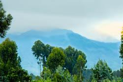 virunga mountains rwanda