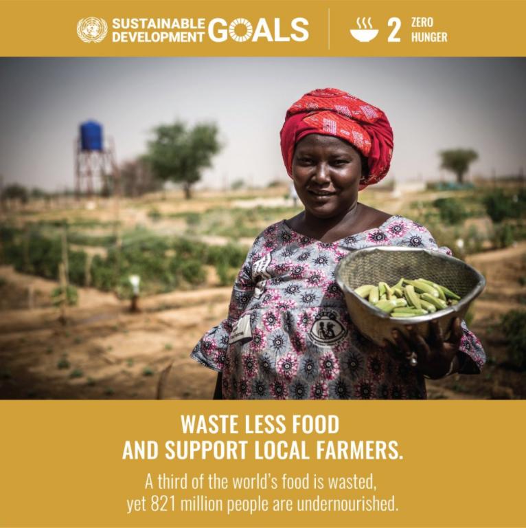 SDG - 2 Zero Hunger